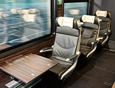 Leo Express Trains