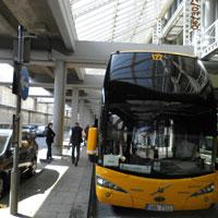 SA bus stop London 2